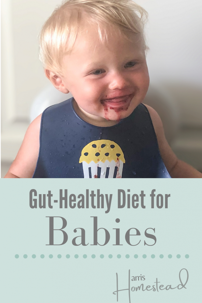 A Wholesome, Gut-Healthy Diet for Babies