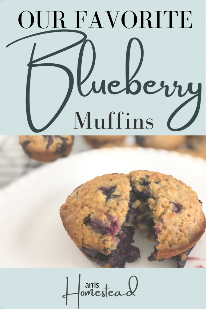 Our Favorite Blueberry Oat Muffins